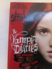 The Vampire Diaries: the Hunters Vol. 3 Destiny Rising