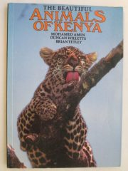 The beautiful animals of Kenya