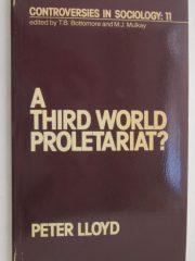 A Third World Proletariat?